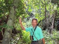 Vår guide inn i jungelen til Crocodile lake