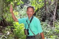 Guiden vår i jungelen