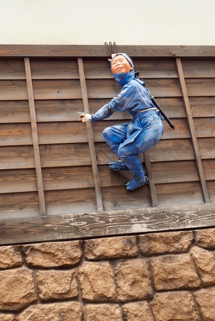 Ninja på taket
